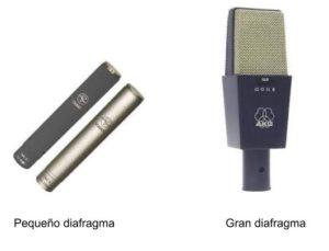 Microfonos diafragma InSitu